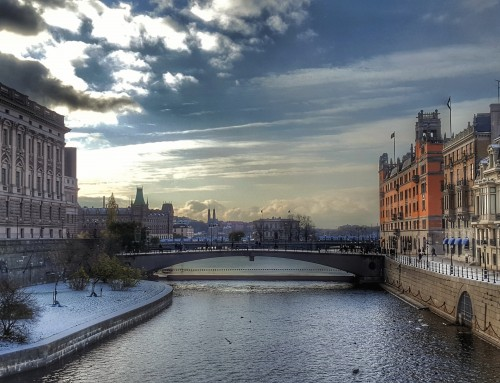 Stockholm: DreamLeague, Chai Lattes & Dogs with Coats